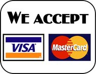 visa payment